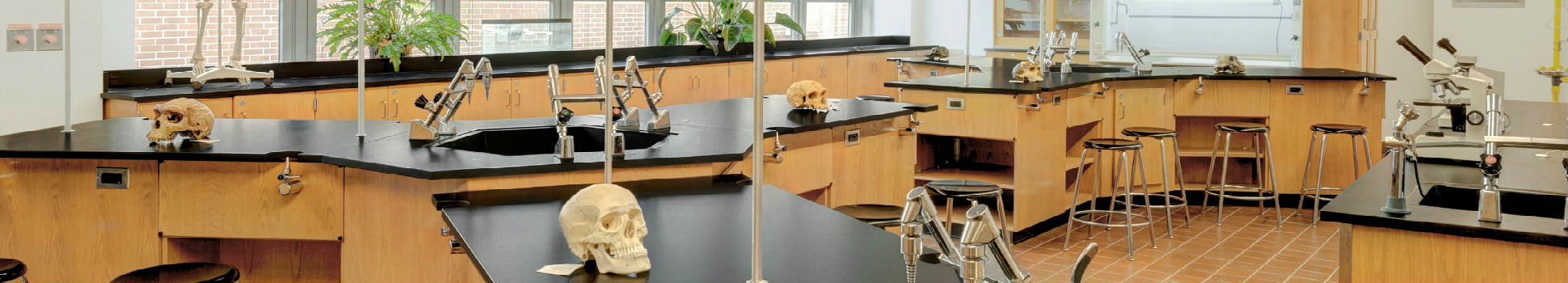Middle College Campus Science Room - Queens
